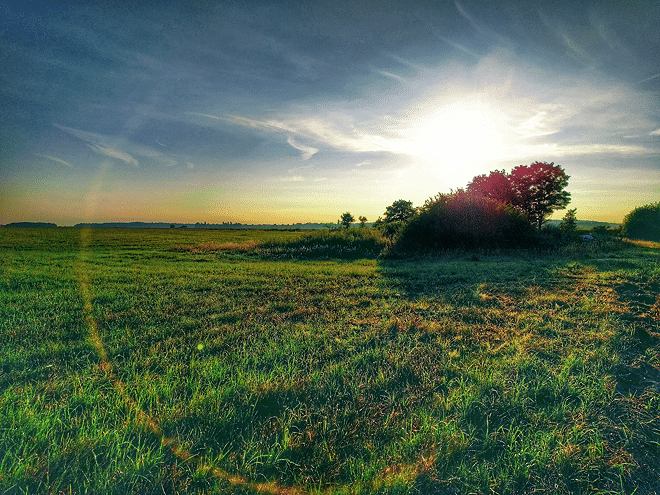 Champs au nord d'Arbonne-la-Foret