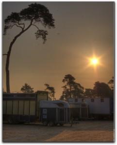 Grand Parquet (Fontainebleau) à 7h du matin