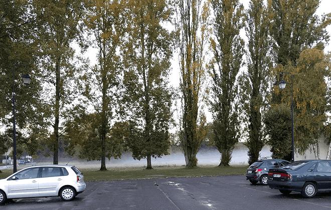 Brouillard en fin de journée à Arbonne-la-Foret